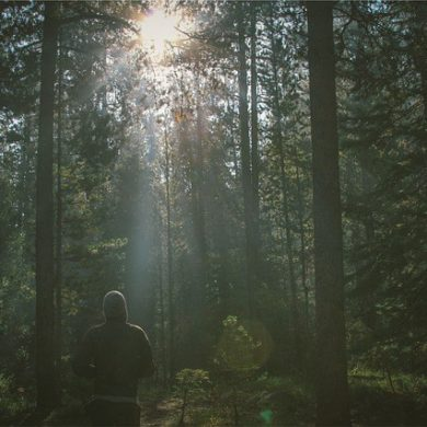 自然体験を研究する意義